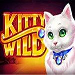 Kitty Wild