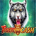 Tiger Cash
